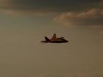F22 Raptor 06