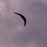 horten-maiden-flight023.jpg